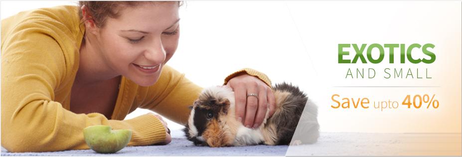 Small Animals - Pet Wish Pros