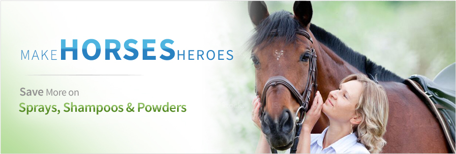 Horses - Pet Wish Pros