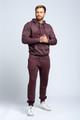 August McGregor Flocked Gorilla Hooded Sweatshirt in Plum