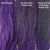 Color comparison from left to right: Dark Purple, Off Black with Dark Purple Tips, Black Orchid with Deep Purple Tips