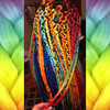 Andrea wearing Citrus Orange, Cobalt Blue, Lime Green, Orchid, Red, Reverse Rainbow, Sky Blue, and Yellow. Braids by Jelly