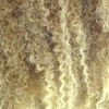 """Color swatch for 17"""" Marley Braid, T6/27/613 Seashore Ombré (I Kick Shins)"""