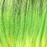 colorchart-kk-3tgreenswamp.jpg