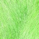 colorchart-kk-kiwi.jpg