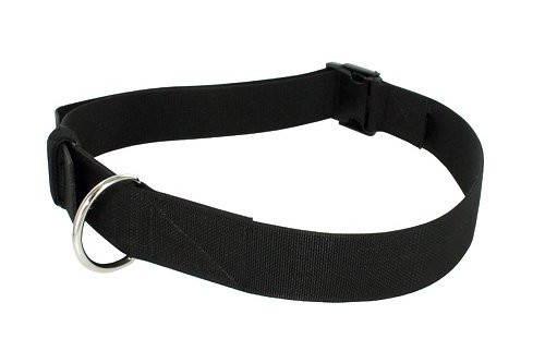 Gould & Goodrich Reinforced Nylon Restraining Belt