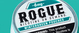 Flavor Focus: Wintergreen Nicotine Pouches from Rogue