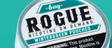 Snus vs Rogue Nicotine Pouches: What's the Difference?