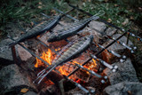 Campfire Trout Recipe: Self-Caught Garlic and Herb Campfire Trout
