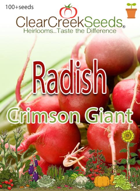 Radish - Crimson Giant (100+ seeds)