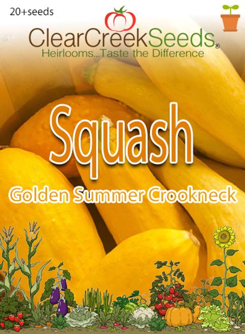 Squash Summer - Golden Summer Crookneck (20+ seeds)