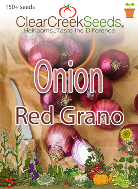 Onion – Red Grano (150+ seeds)