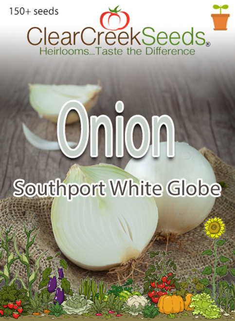 Onion – Southport White Globe (150+ seeds)