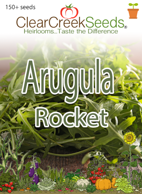 Arugula - Rocket (150+ seeds)