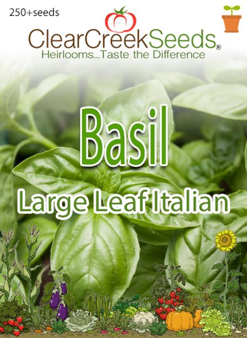 Basil - Large Leaf Italian (250+ seeds)