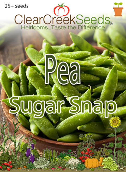 Pea Snap - Sugar Snap (25+ seeds)