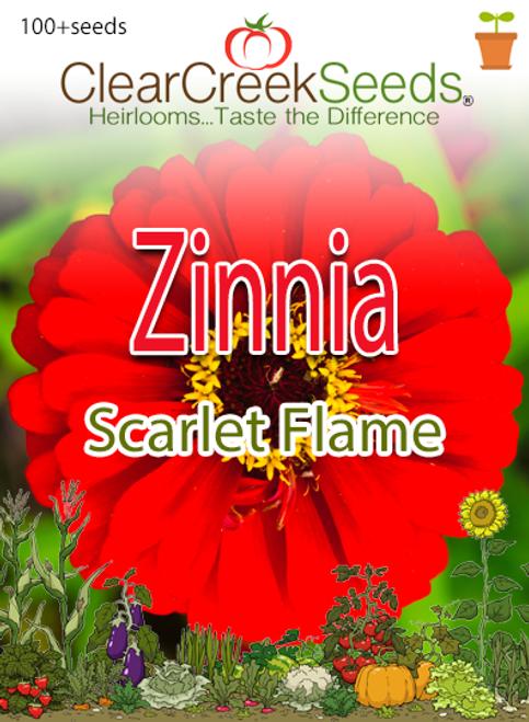 "Zinnia ""Scarlet Flame"" (100+ seeds)"