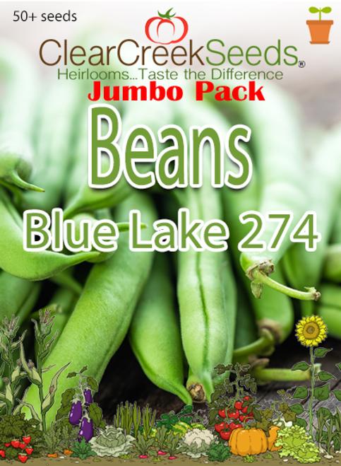 Bean (Bush) - Blue Lake 274 (50+ seeds) JUMBO PACK
