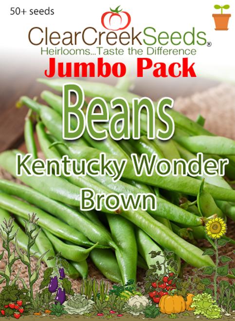 Bean (Pole) - Kentucky Wonder Brown (50+ seeds) JUMBO PACK