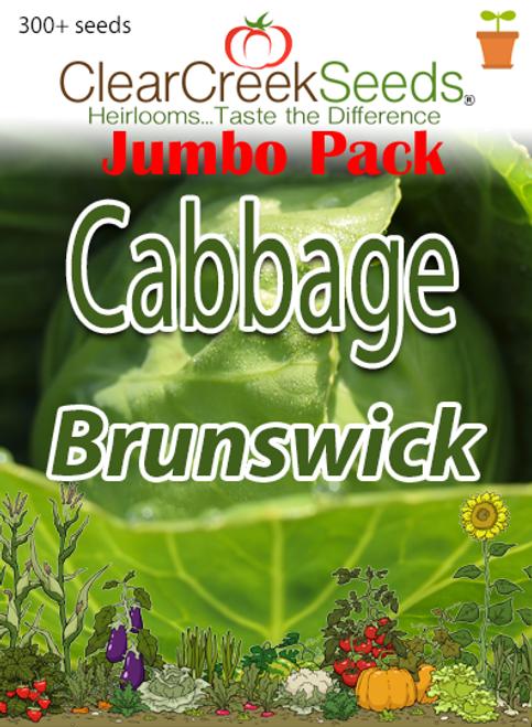 Cabbage - Brunswick (300+ seeds) JUMBO PACK