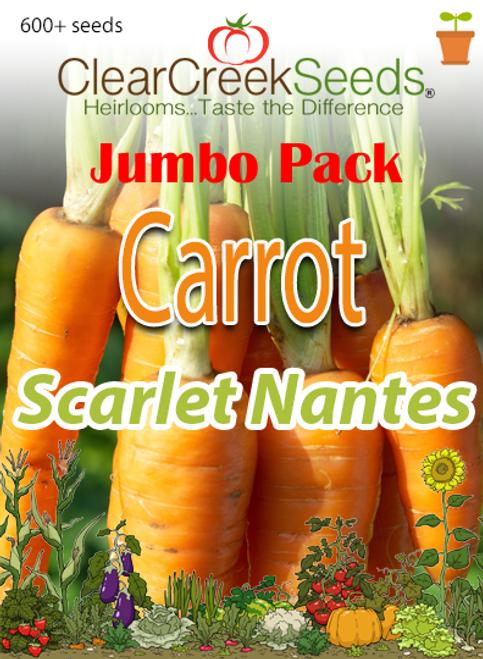 Carrot - Scarlet Nantes (600+ seeds) JUMBO PACK