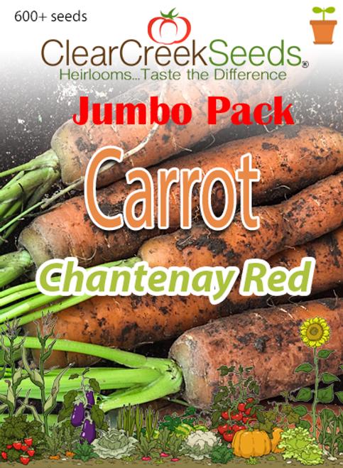Carrot - Chantenay Red (600+ seeds) JUMBO PACK