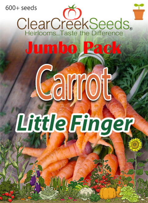 Carrot - Little Finger (600+ seeds) JUMBO PACK