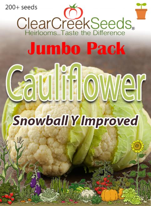 Cauliflower - Snowball Y Improved (200+ seeds) JUMBO PACK