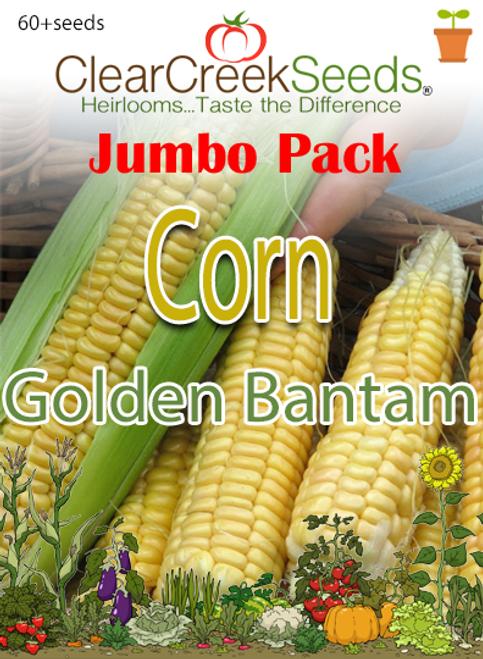 Corn – (Sweet) Golden Bantam (60+ seeds) JUMBO PACK