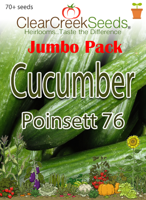Cucumber - Poinsett 76 (70+ seeds) JUMBO PACK
