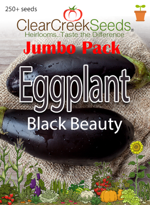 Eggplant - Black Beauty (250+ seeds) JUMBO PACK
