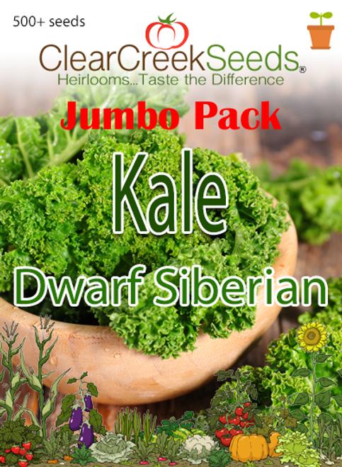 Kale - Dwarf Siberian (500+ seeds) JUMBO PACK