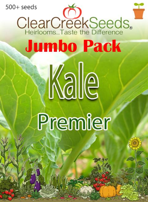 Kale - Premier (500+ seeds) JUMBO PACK