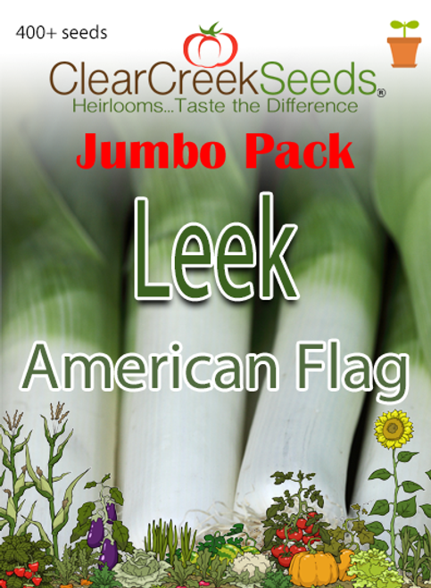 Leek - American Flag (400+ seeds) JUMBO PACK