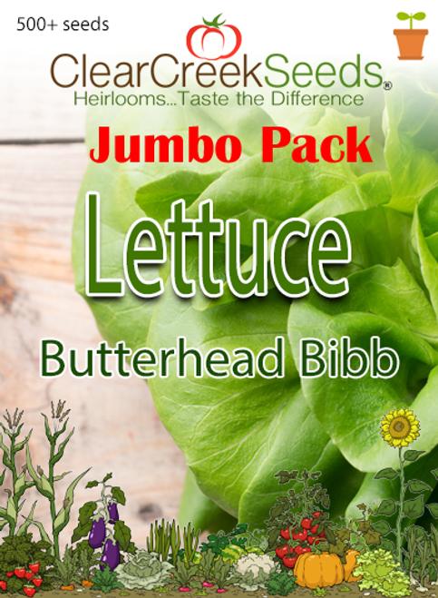 Lettuce Butterhead - Bibb (500+ seeds) JUMBO PACK