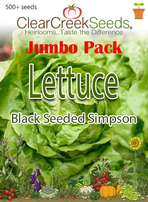 Lettuce Leaf - Black Seeded Simpson (500+ seeds) JUMBO PACK