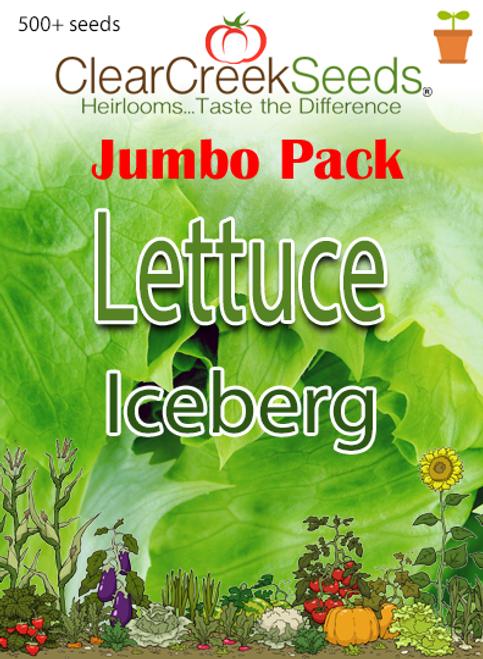 Lettuce Head - Iceberg (500+ seeds) JUMBO PACK