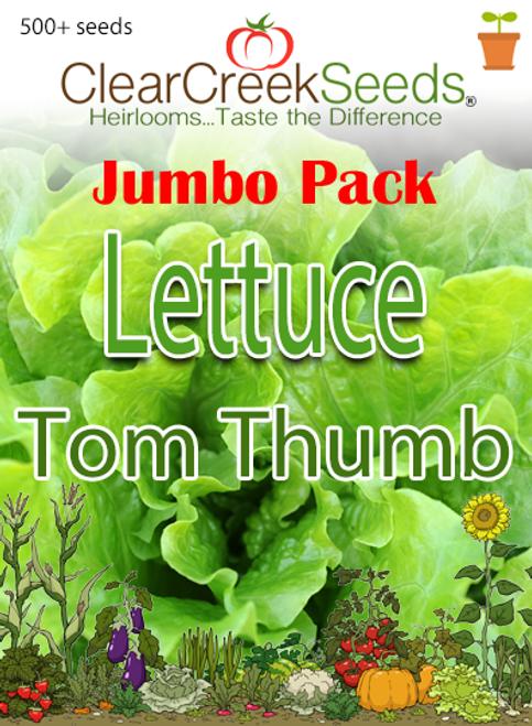 Lettuce Butterhead - Tom Thumb (500+ seeds) JUMBO PACK
