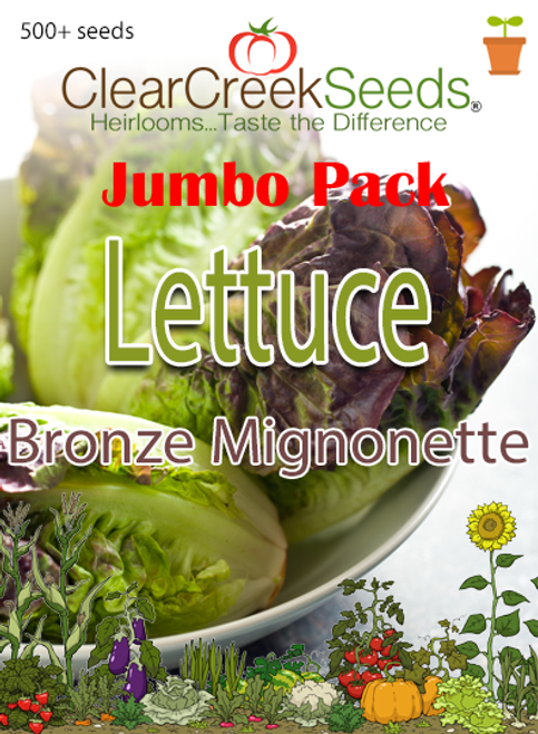 Lettuce Butterhead - Bronze Mignonette (500+ seeds) JUMBO PACK