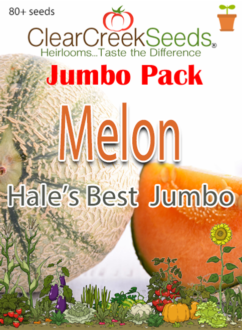 Melon - Cantaloupe Hale's Best Jumbo (80+ seeds) JUMBO PACK