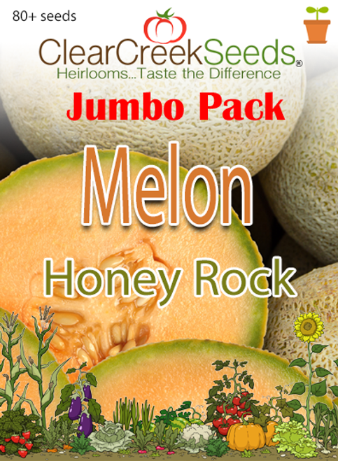 Melon - Cantaloupe Honey Rock (80+ seeds) JUMBO PACK