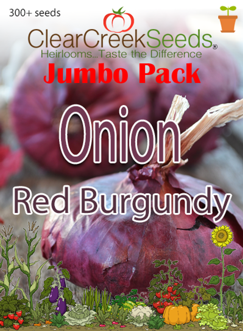 Onion - Red Burgundy (300+ seeds) JUMBO PACK