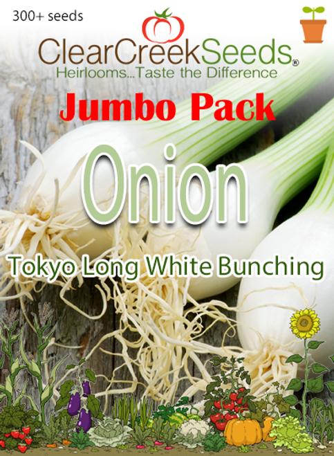 Onion - Tokyo Long White Bunching (300+ seeds) JUMBO PACK