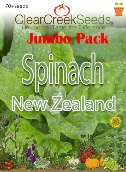 Spinach - New Zealand (70+ seeds) JUMBO PACK