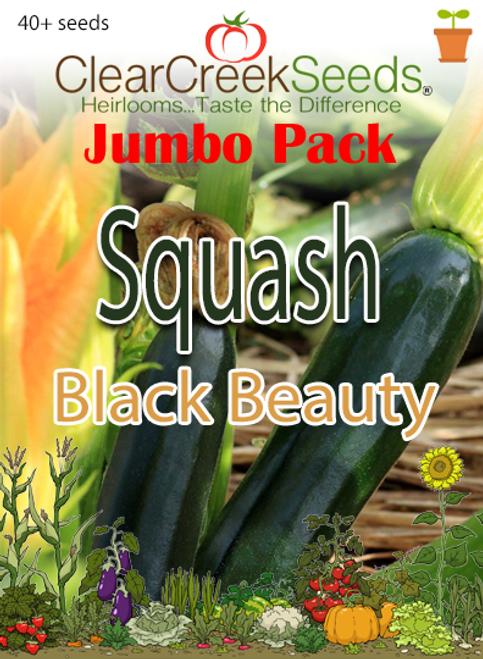 Squash Summer - Black Beauty (40+ seeds) JUMBO PACK