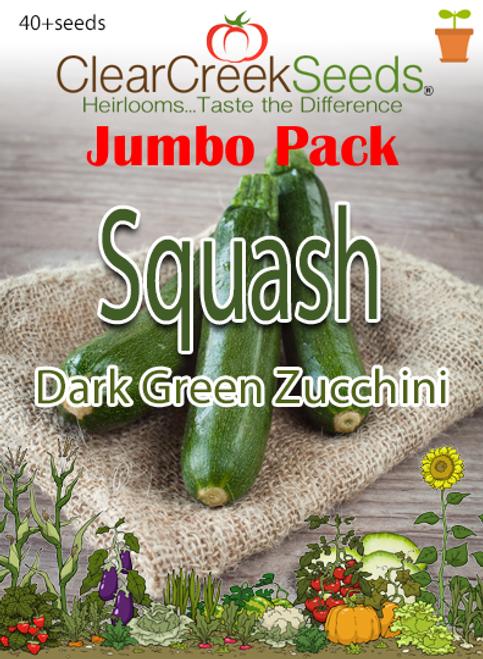 Squash Summer - Dark Green Zucchini (40+ seeds) JUMBO PACK