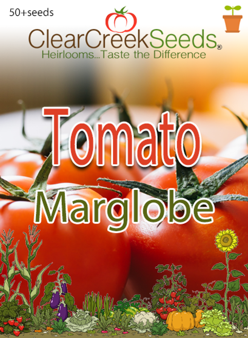 Tomato – Marglobe (50+ seeds)