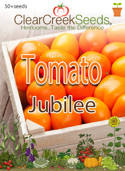 Tomato - Golden Jubilee (50+ seeds)