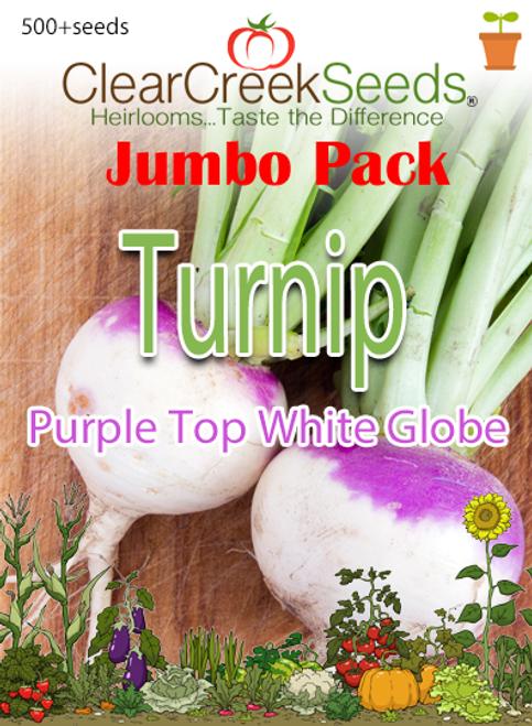 Turnip - Purple Top White Globe (500+ seeds) JUMBO PACK