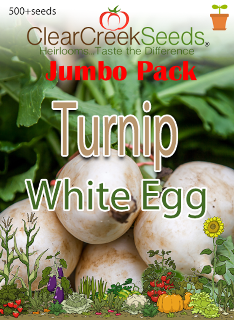 Turnip - White Egg (500+ seeds) JUMBO PACK