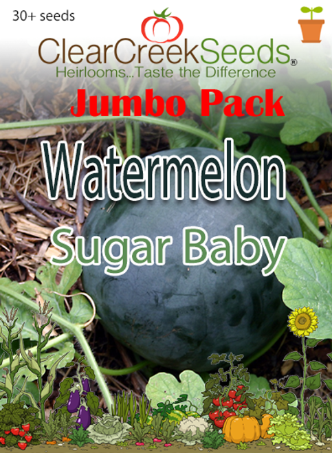 Watermelon - Sugar Baby (30+ seeds) JUMBO PACK